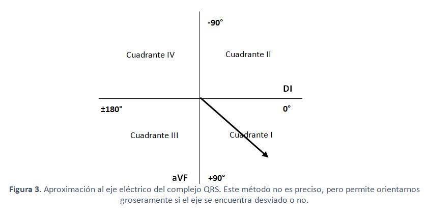 sintesis med uchile cl sintesis med uchile cl ekg vector art ekg vector diagram
