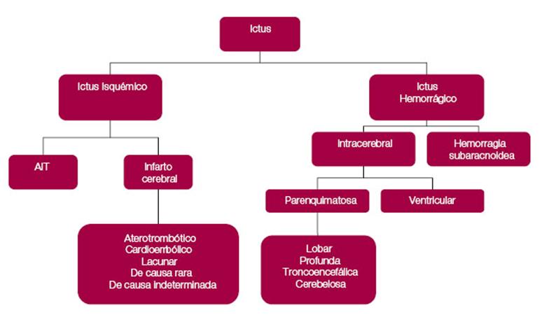 tipos de hemorragia cerebral pdf